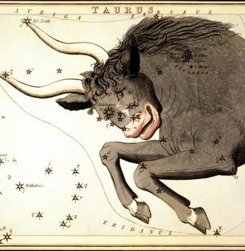 Numerology Royal Star Of the Bull