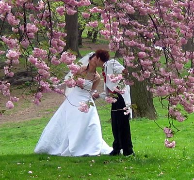 numerology and marriage