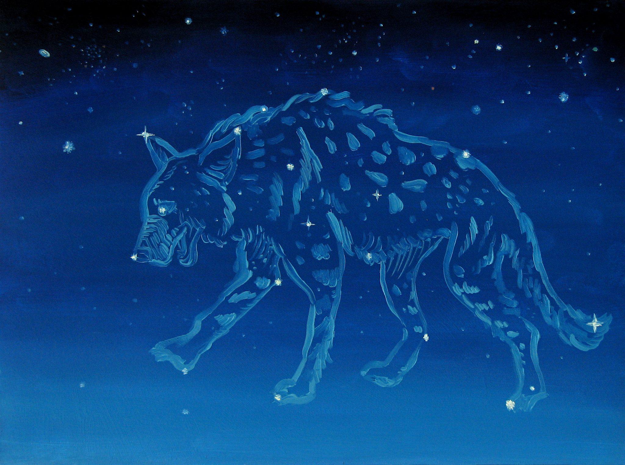 Inauspicious and Auspicious Constellations - Astronlogia