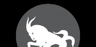 Capricorn the Sea Goat