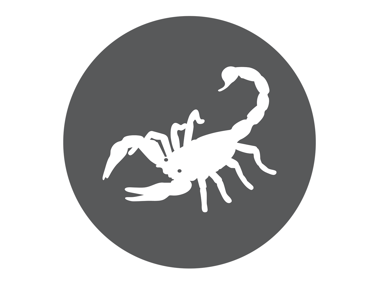 Scorpio the Scorpion - The Brave and Loyal Constellation