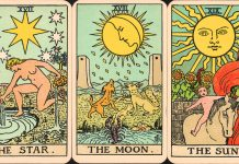 Daily Tarot Readings