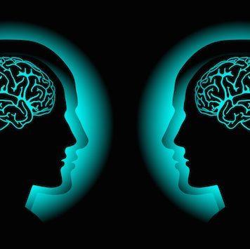 Twin Telepathy