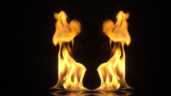 Twin Flame Numerology